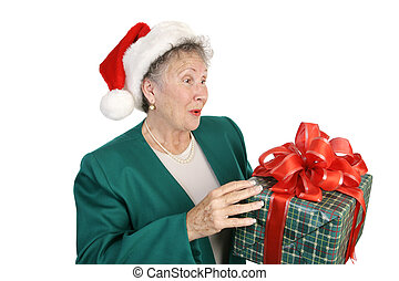 Surprise Christmas Package