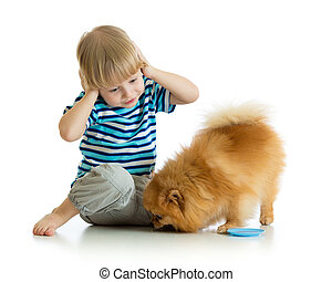 surprised child boy with dog