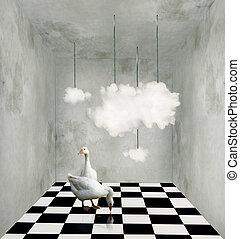 surréaliste, salle, nuages, canards