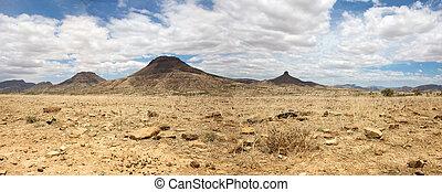 Surreal panorama of the Kaokoland game reserve in Namibia