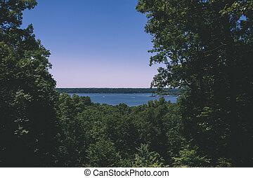 surreale, foresta, lago, trascurare, scena