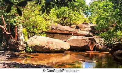Surrounded by Stones Pond in Forest Reflects Rocks Plants Sky