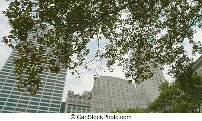 Surrounding buildings and skyscrapers visible from the Bryant Park, New York