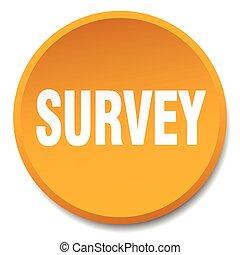 survey orange round flat isolated push button