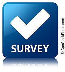 Survey (validate icon) blue square button
