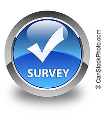 Survey (validate icon) glossy blue round button