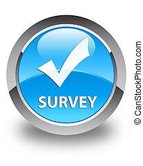 Survey (validate icon) glossy cyan blue round button