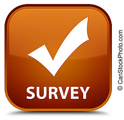 Survey (validate icon) special brown square button