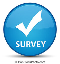 Survey (validate icon) special cyan blue round button