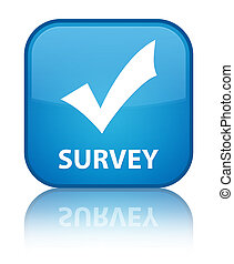 Survey (validate icon) special cyan blue square button