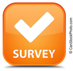Survey (validate icon) special orange square button