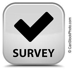 Survey (validate icon) special white square button