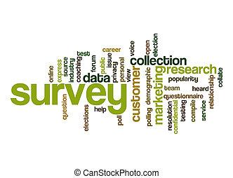Survey word cloud