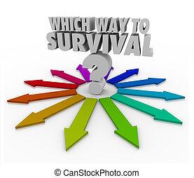 survie, quesion, flèches, manière, pointage