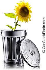 3D illustration of a eco friendly concept