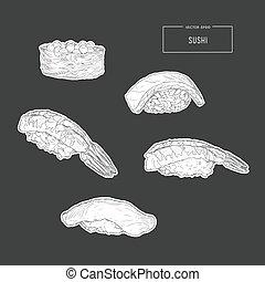 Sushi hand drawn illustration.
