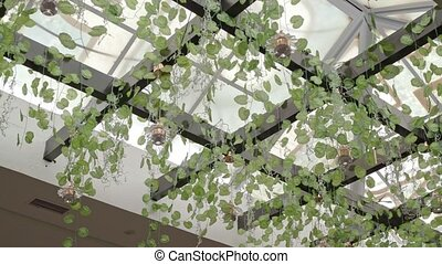 Suspended botanical garden in the interior for decoration and for growing plants