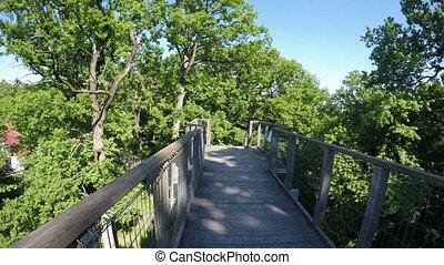 Suspended bridge (Vanatori Natural Park) to admire the bio...