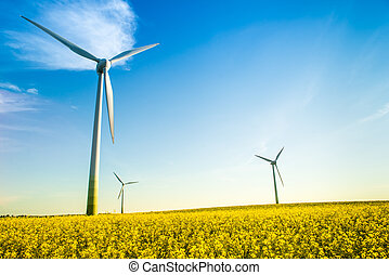 sustainable - picture of a field under a blue sky