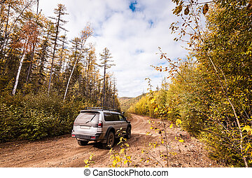 SUV on a forest road