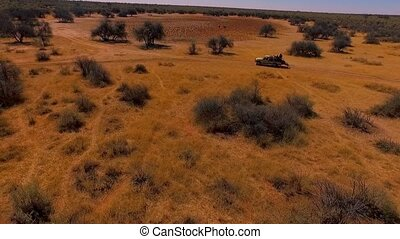 SUV with hunters goes along the trails of Namibia.