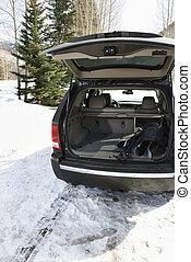 SUV with ski equipment.