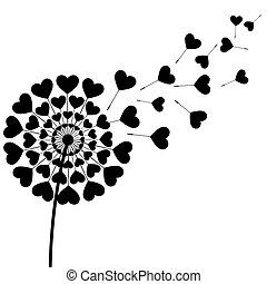 svart, ludd, maskros, hjärta gestaltade, vita, bakgrund