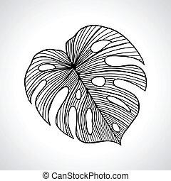 svart, makro, palmblad, isolated.