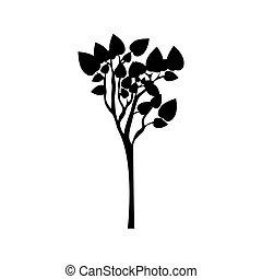 svart, silhuett, träd, med, lövad, grenverk