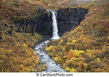 svartifoss, vízesés, -, izland