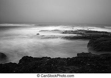 svartvitt, ocean, scenisk