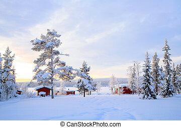 sverige, lapland, vinter landskab