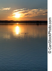 svet, -, jezero, čech, trebon, západ slunce, přes, republika