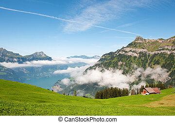 svizzera, montagne