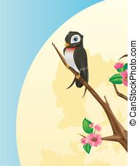 Swallow bird on cherry tree branch