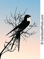 Vector illustration of a swallow bird sitting on a branch