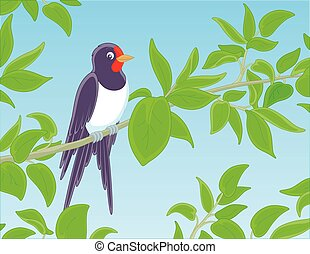 Swallow perched on a green branch