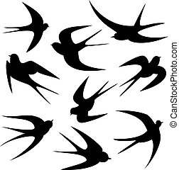 Swallows - a set with silhouettes of swallows