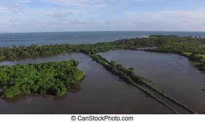 Swamp and marsh land near the sea. Drone Aerial - swamp and...