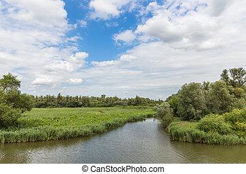 "Swamp of the National Park ""De Biesbosch"" in the Netherlands"