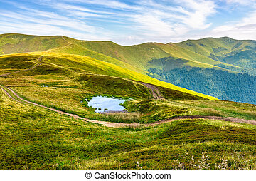 swamp on hill side in mountains - summer landscape in...
