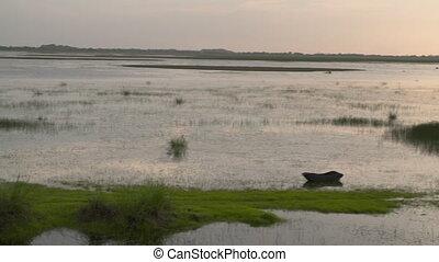 Swampland and Shoreline - Handheld, panning, medium wide...