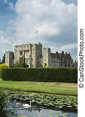 Swan and English castle