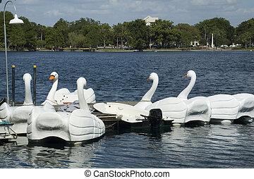 Swan Boats at Lake Eola
