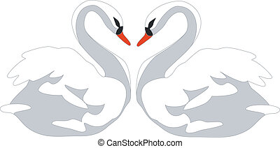 swan couple color 01 - swan couple in color 01