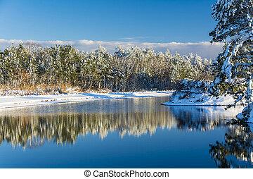Swan Lake Winter