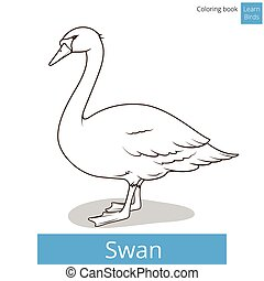 Swan learn birds coloring book vector