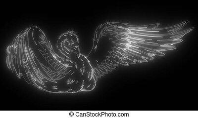 swan., numérique, néon, vidéo, animation