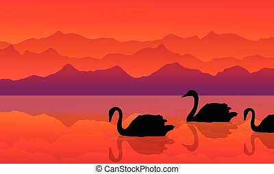 Swan on the lake of silhouette landscape