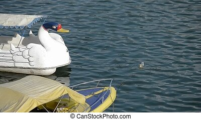 swan pedal boat at toba lake medan, north sumatera-indonesia
